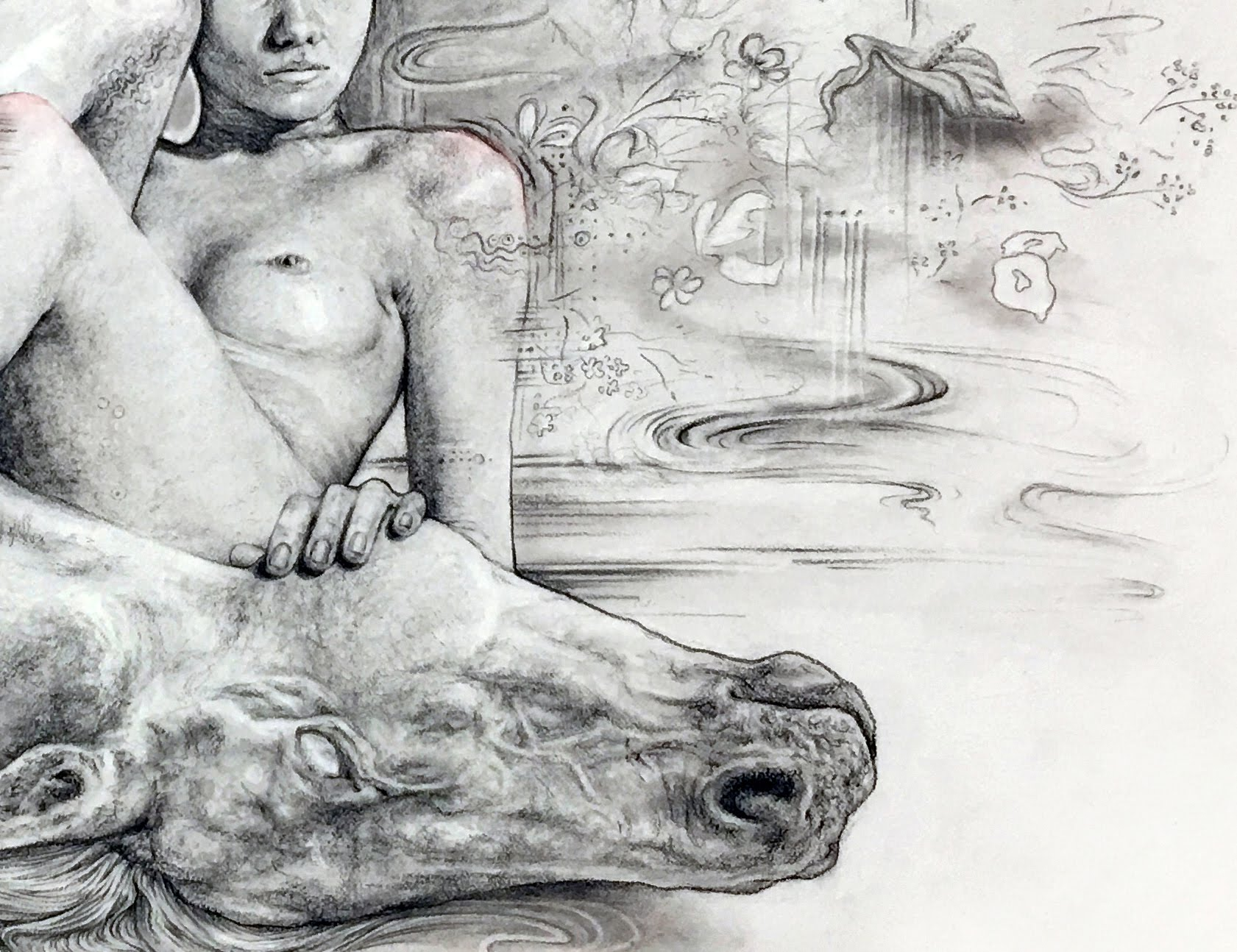 Closeup of charcoal drawing by Suzanne Head